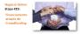 Financiamento através de Crowdfunding, imagem de destaque, como começar negócio online